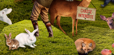 http://sans-queue-ni-tige.cowblog.fr/images/pourdamien.jpg